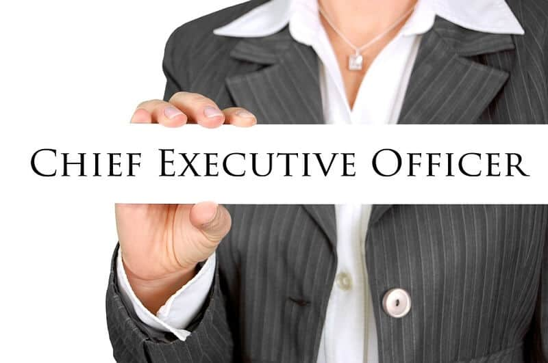 Ceo Job Description  Chief Executive Officer Job Description